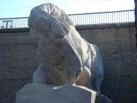 Kröllwitzer Brücke - das Pferd