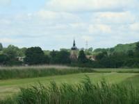 Uferlandschaft IV