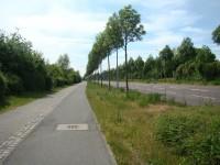 Permoserstraße Richtung Zentrum