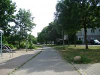 Zurück in der Platanenstraße